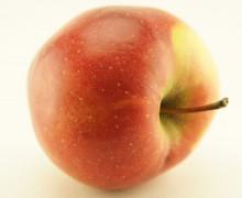 Яблочная диета от Дока