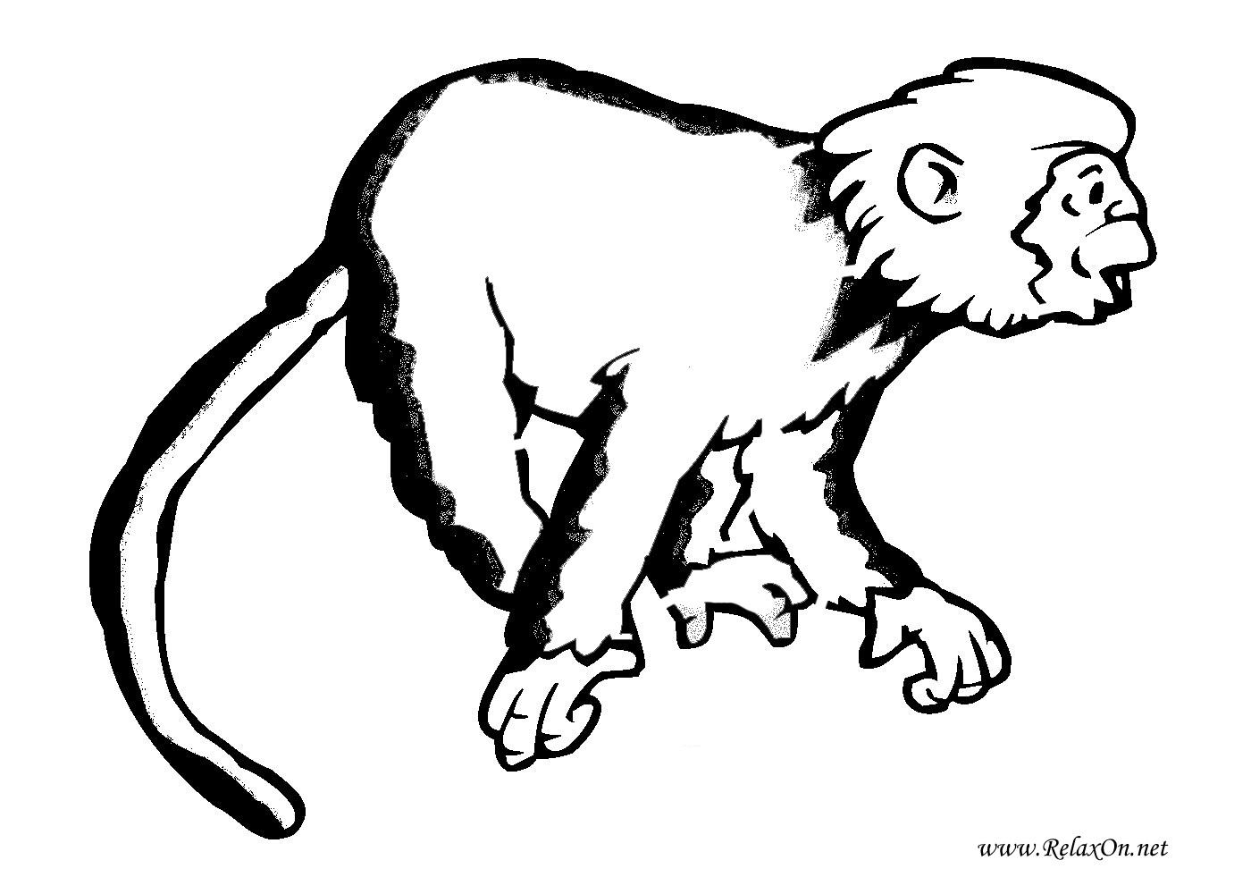 5-шаблон обезьяны на Новый год