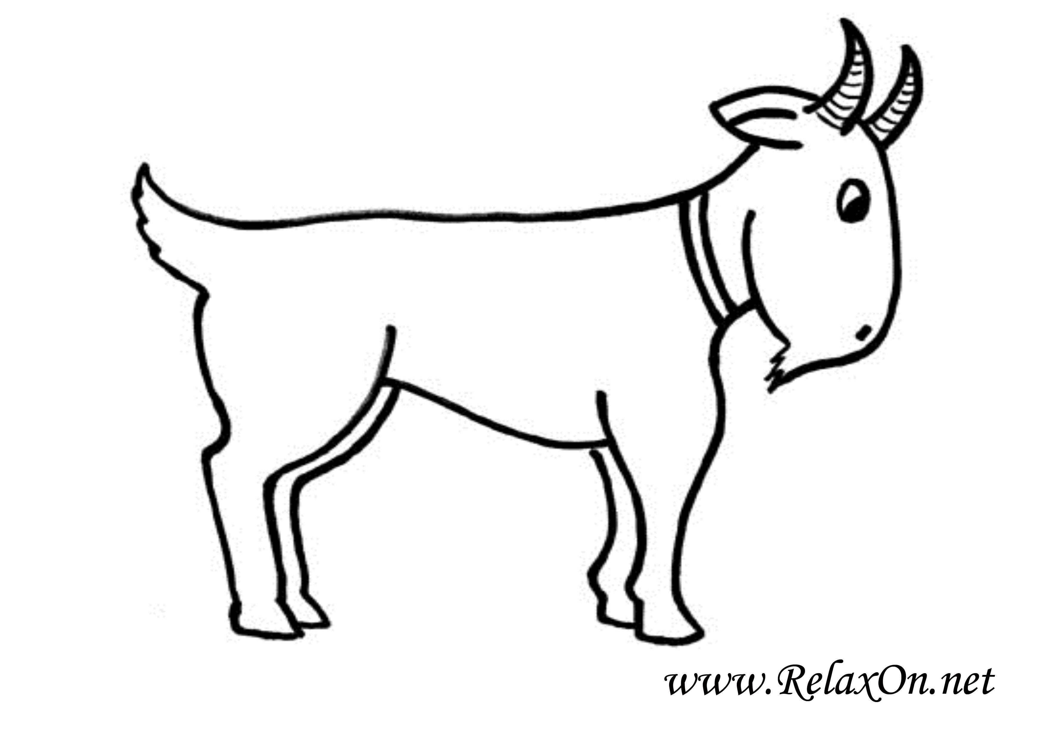 Коза 10