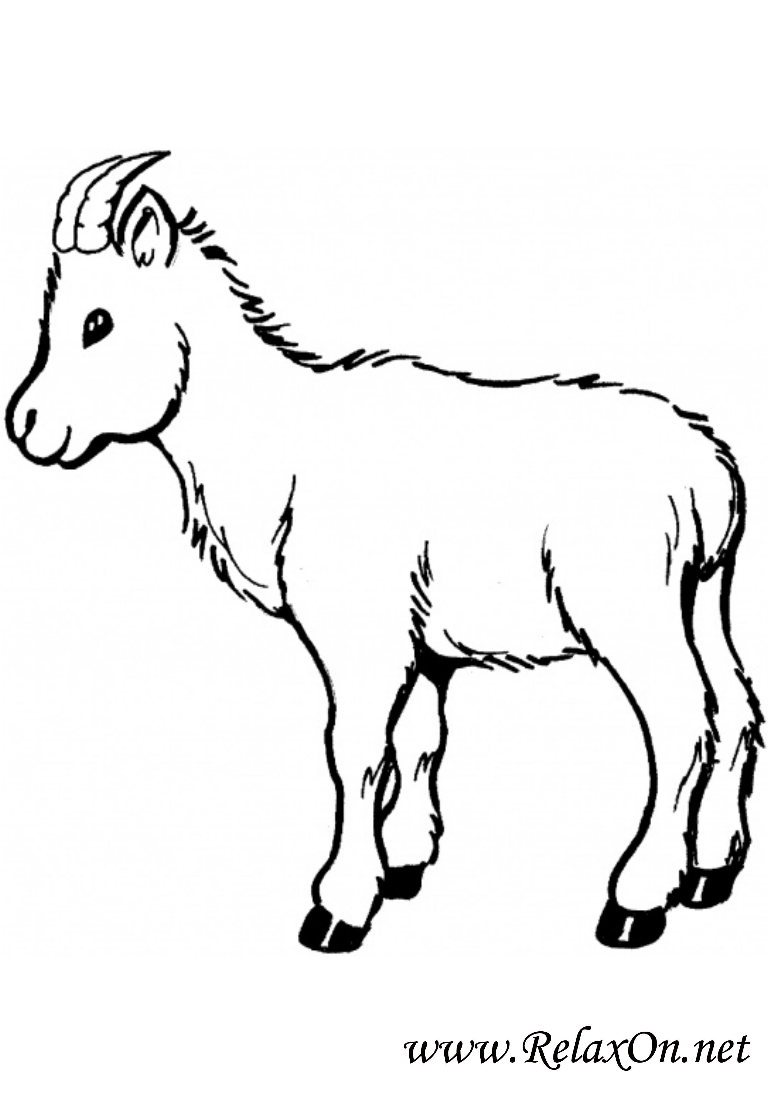 Коза 9