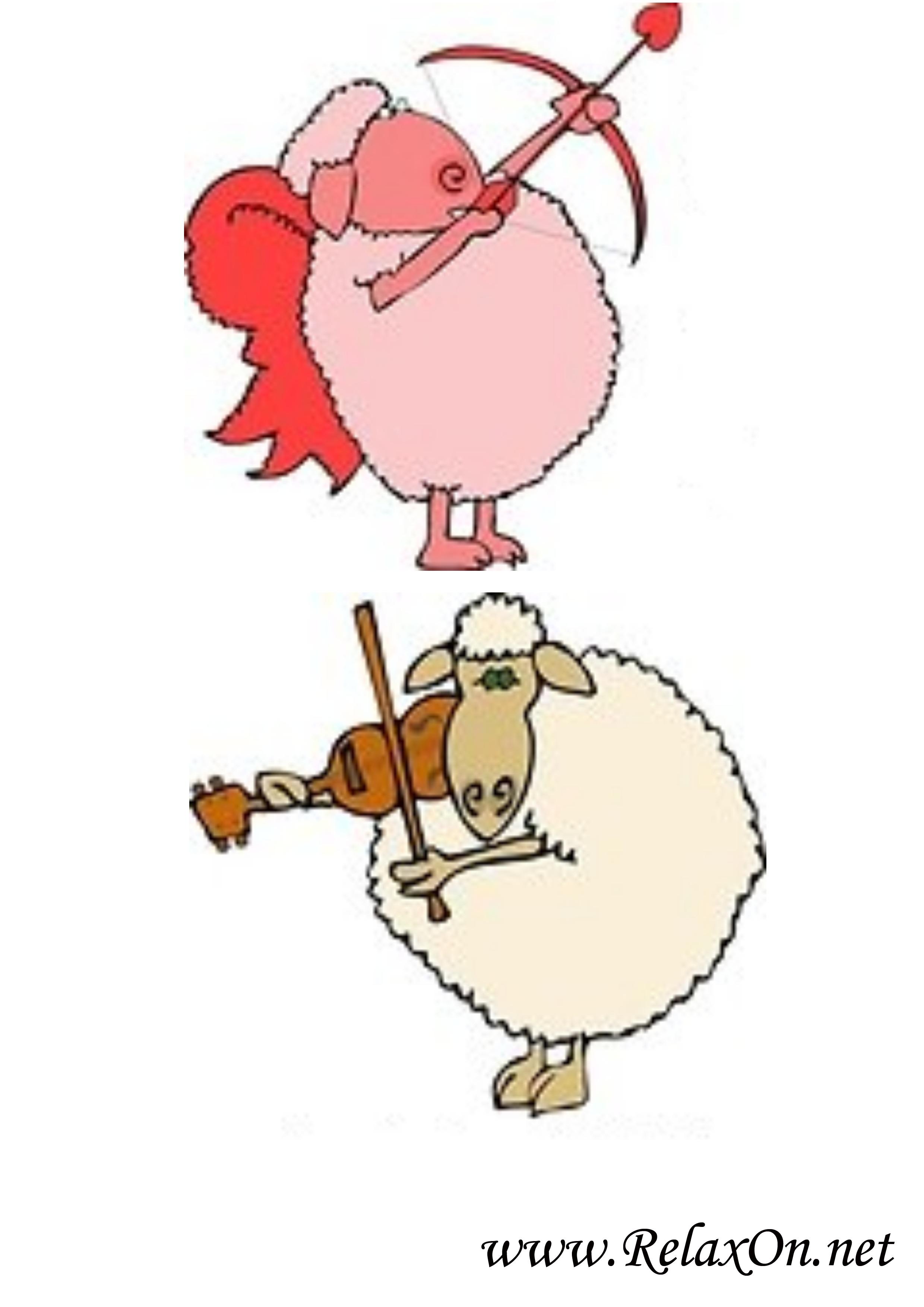 Овца 1