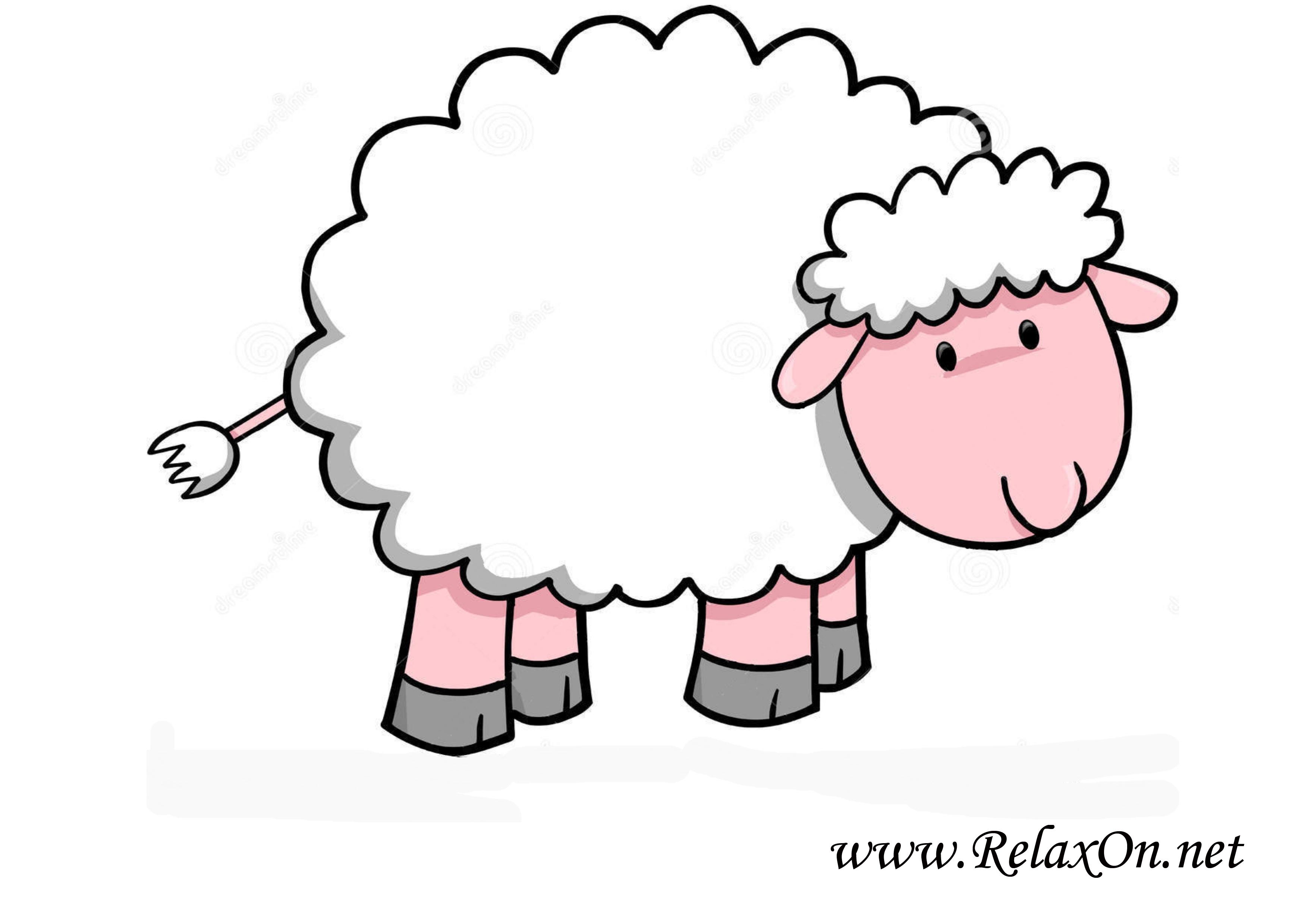 Овца 10