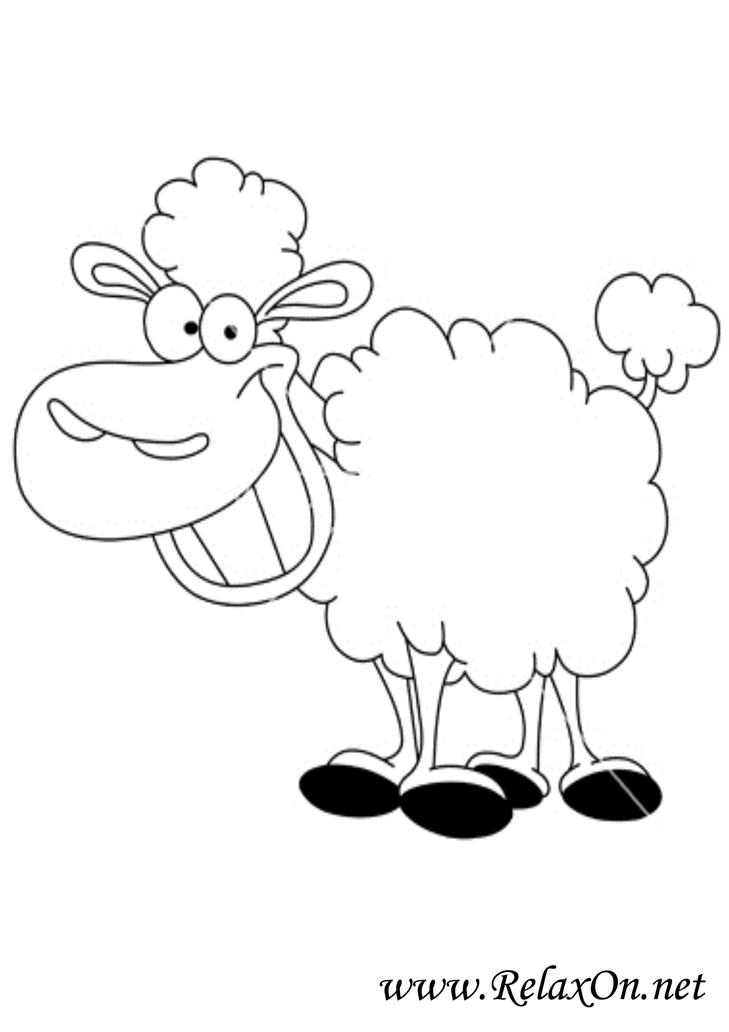 Овца 8